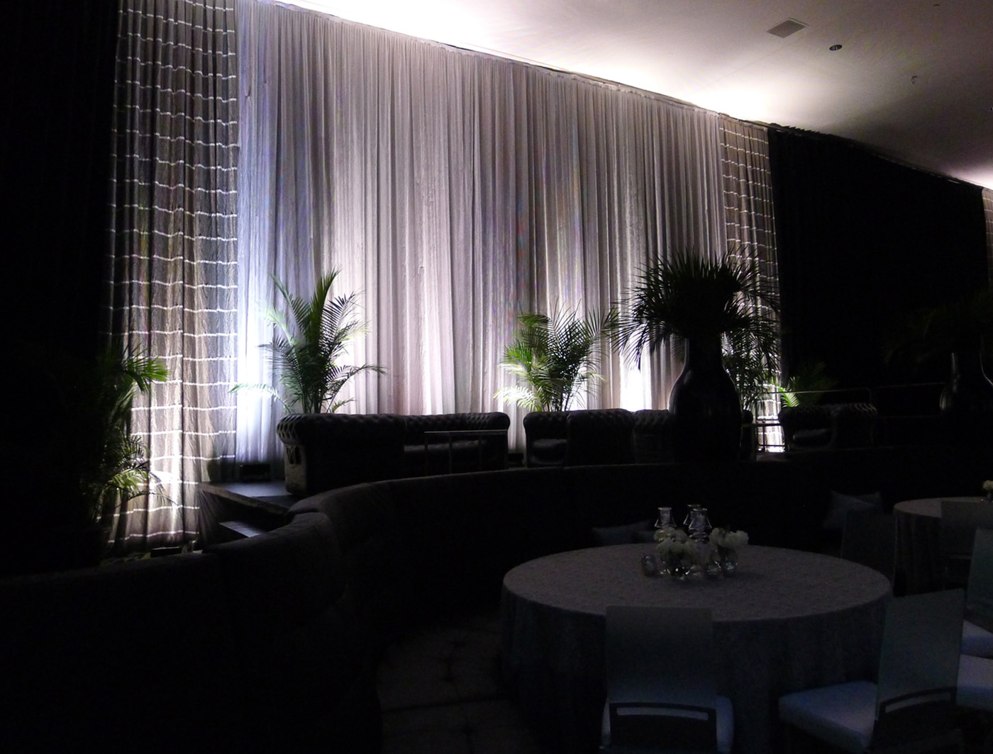 Black Drapes with Lynes and Silvet